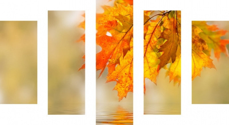 MacJac Art 5 Panel CANVAS Autumn Pond Theme Wall Art Photography Prints Model 5PC-AL-41783