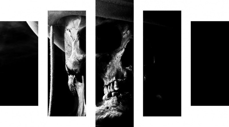 MacJac Art 5 Panel CANVAS Cowboy Skull Theme Wall Art Photography Prints Model 5PC-AL-0262