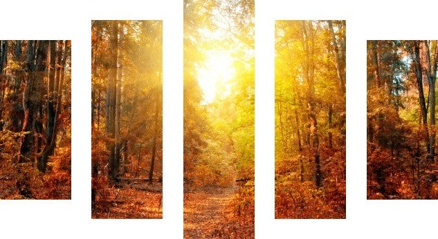 MacJac Art 5 Panel CANVAS Forest Theme Wall Art Photography Prints Model 5PC-AL-00158