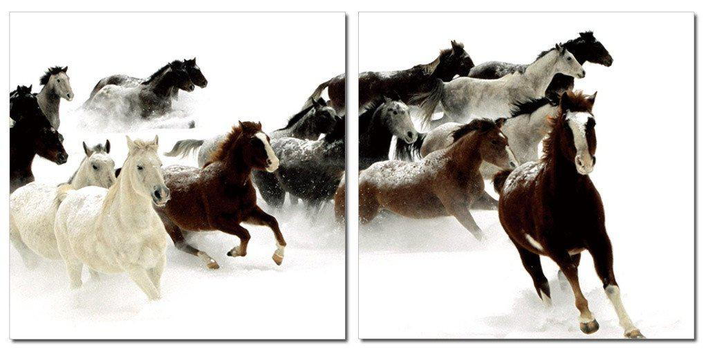 MacJac Art 2-Panel VINYL Wild Horses Theme Wall Art Photography Prints Model CH-2004
