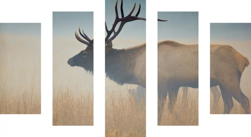 MacJac Art 5 Panel CANVAS Elk Theme Wall Art Photography Prints Model 5PC-AL-1880