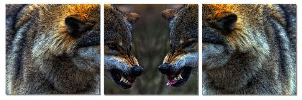 MacJac Art 0158 3-Panel VINYL Snarling Wolves Theme Wall Art Photography Prints Model CH-AL-0158