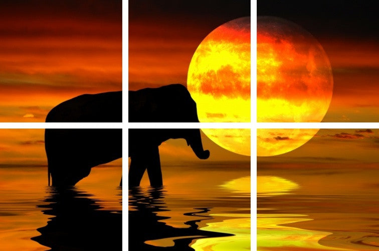 MacJac Art 6-Panel VINYL Elephant Theme Wall Art Photography Prints Model AL-0326