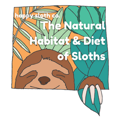 The Natural Habitat & Diet of Sloths