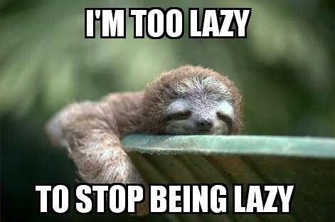 Sloth being lazy and dangling arm