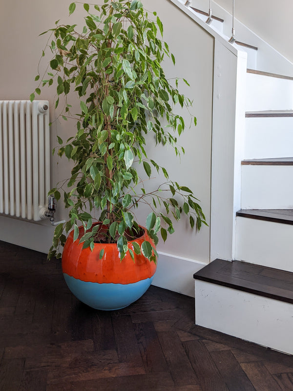 Fernanda large indoor plant pot, bright orange glaze on matt blue