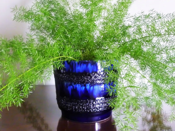 Vintage Scheurich indoor plant pot, blue and black lava