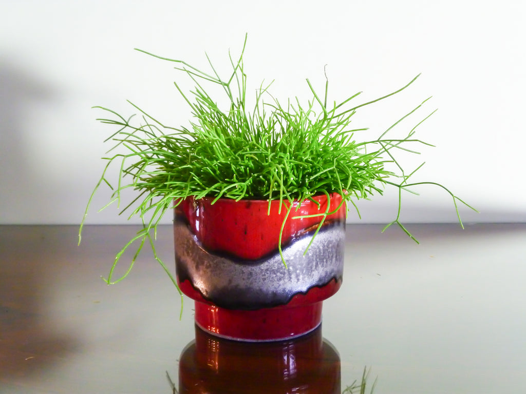 Ceray indoor plant pot, silver band on deep red