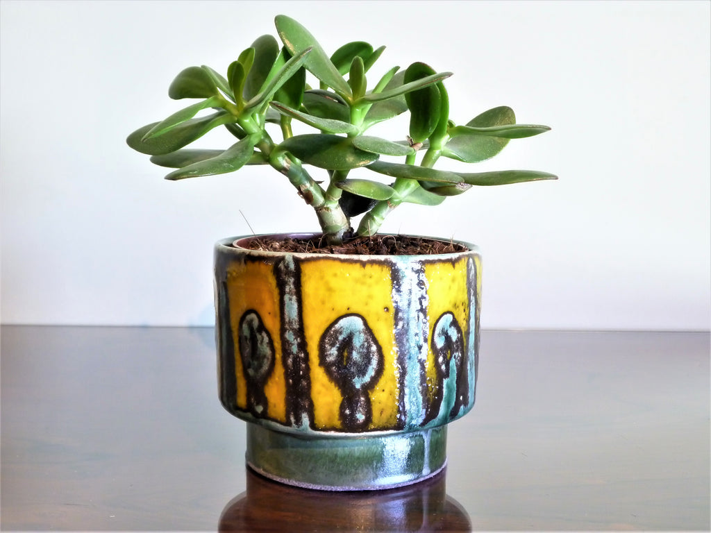 Adal indoor plant pot, green midcentury pattern over bright yellow