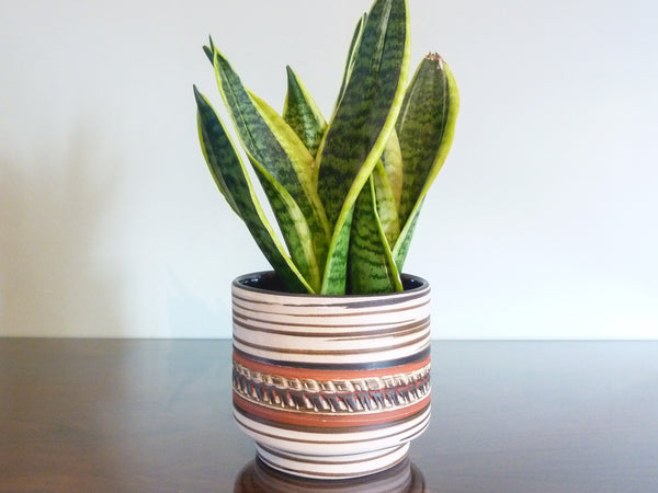 Vintage Dumler & Breiden indoor plant pot, brown, beige and terracotta with textured decoration