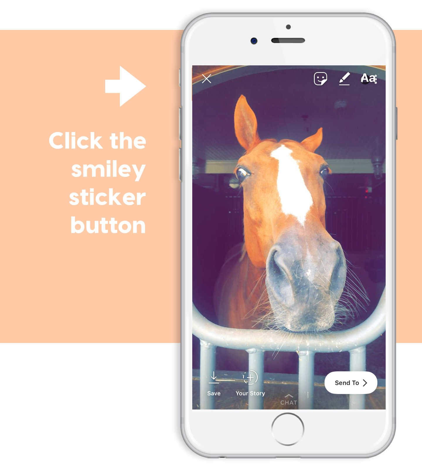 reformat your monocle on your horse for ponyapp