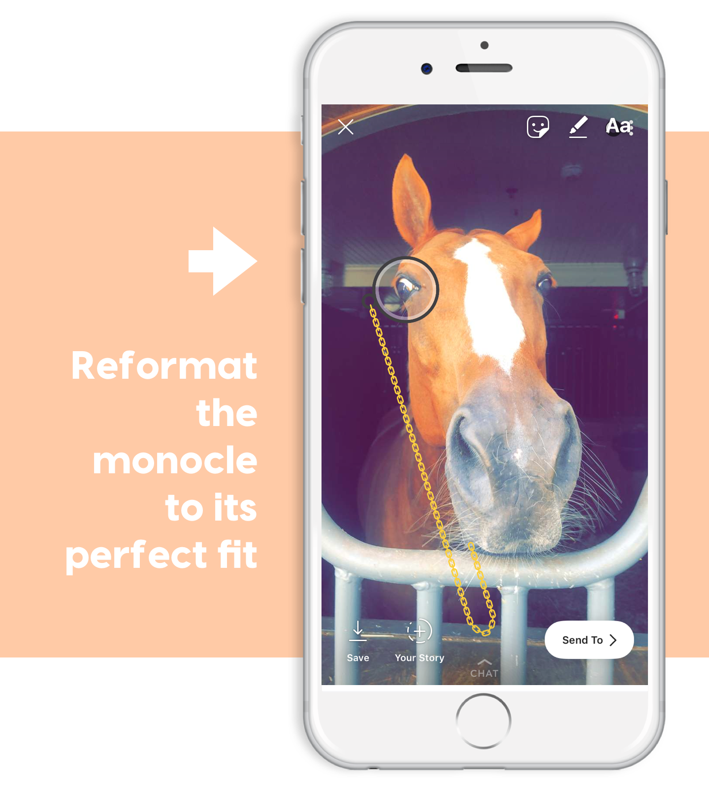 format your pony monocle for ponyapp instagram