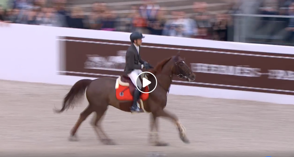 Henrik & Mary Lou Earn Top Marks All Around at Den Bosch