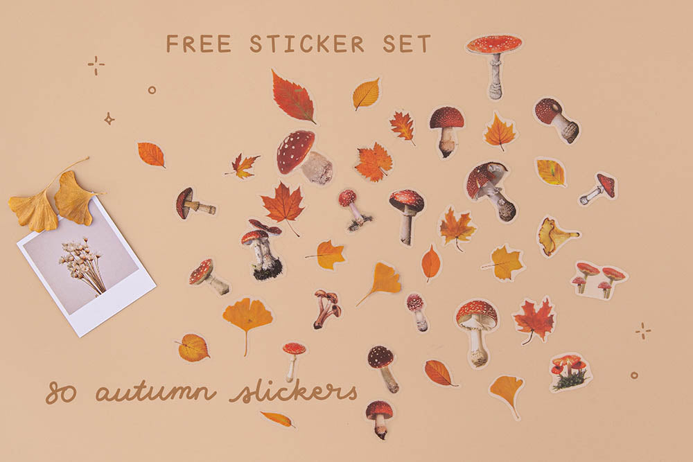 Tsuki Mixed Scrapbook Paper Pack with free sticker set of eighty autumn stickers with autumn leaves and polaroid picture on beige background
