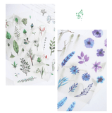 Watercolour Plants + Flowers Stickers - Set of 6!