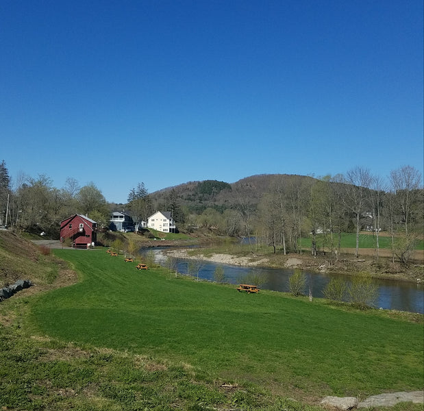 Top 5 Picnic Spots in Woodstock Village