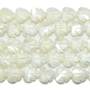 Beads, Bead, Shell, Shell Bead, Shell Beads, Leaf, Leaf Bead, Leaf Beads, White, 12x14mm, 12mm, 14mm