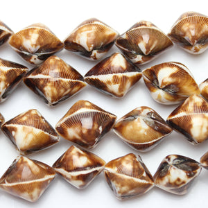 Philippine Natural Brown Cockle Shell BeadBeads by Halcraft Collection