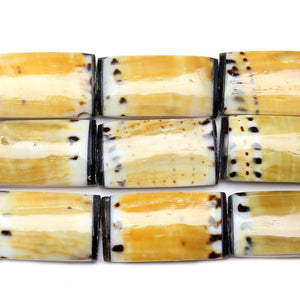 Philippine Dark Conus Capitanlus Shell 14x28mm  Approx.Beads by Halcraft Collection