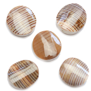 Philippine Pegulinus Shell Beads 13x21mm Approx.Beads by Halcraft Collection