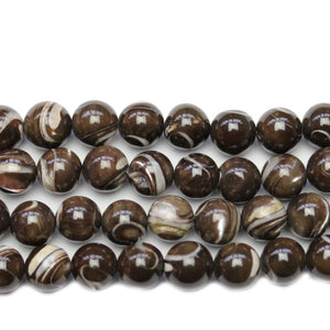 Brown Dyed Fancy Trochid Shell Round 9.5mm Beads