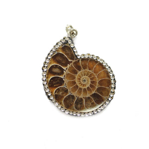 Fossil Shell with Rhinestones 30mm PendantPendant by Halcraft Collection