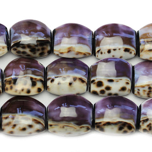 Philippine Natural Double Kara Cowrie Shell Beads 30x33mm, Approx.
