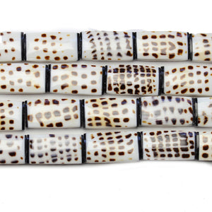 Philippine Natural Conus Litteratus Shell Beads 14x27mm, Approx.