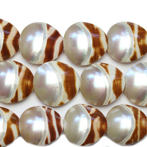 Philippine Natural Shell Beads 29x30mm, Approx.Beads by Halcraft Collection