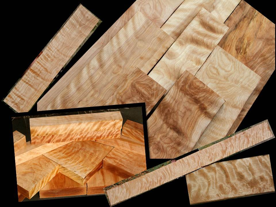 Exceptional Birch at Exceptional Prices