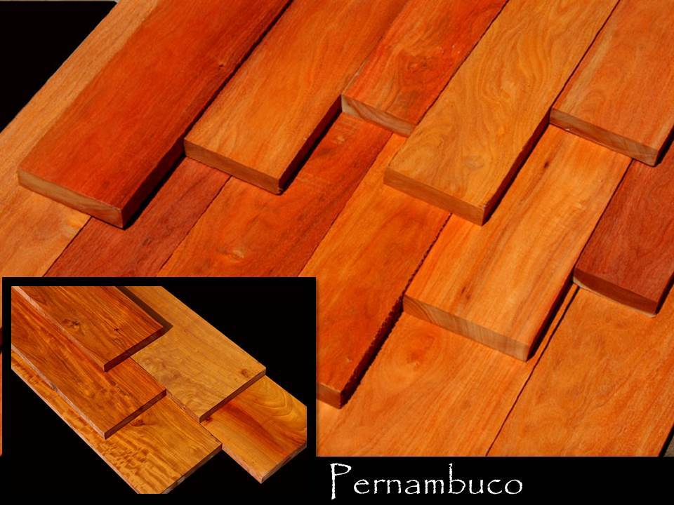 Rare Pernambuco / Brazil Wood, Takes a Glass-like Finish