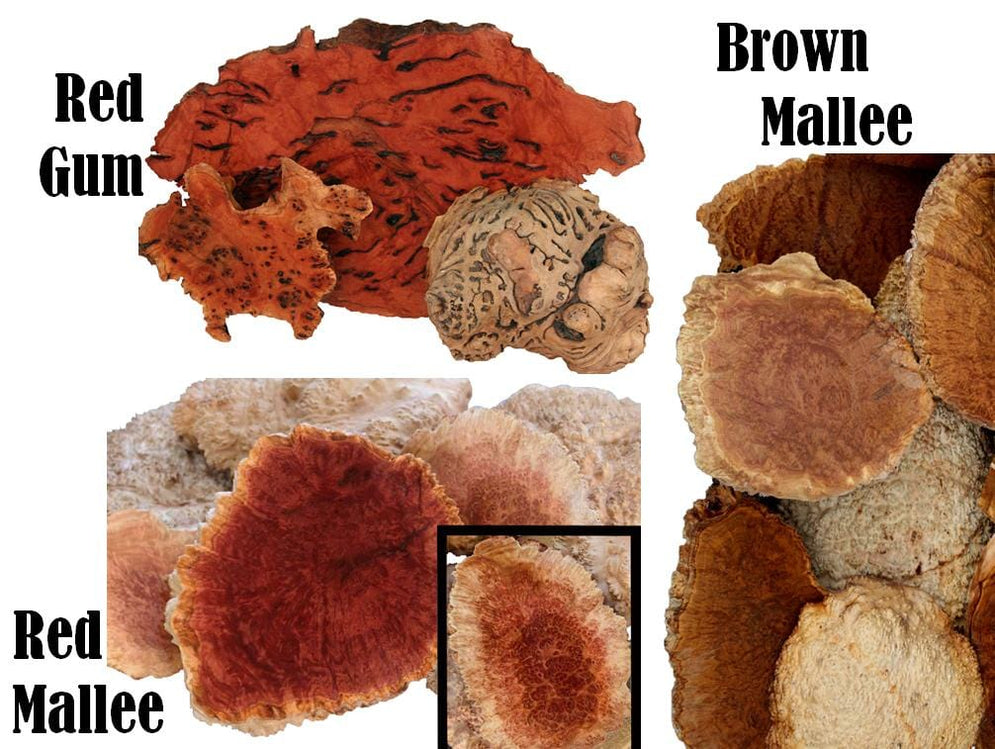 Best Burl Caps 3 in 1, Pick it Quick