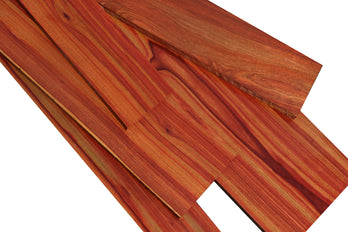 Bacon Bloodwood