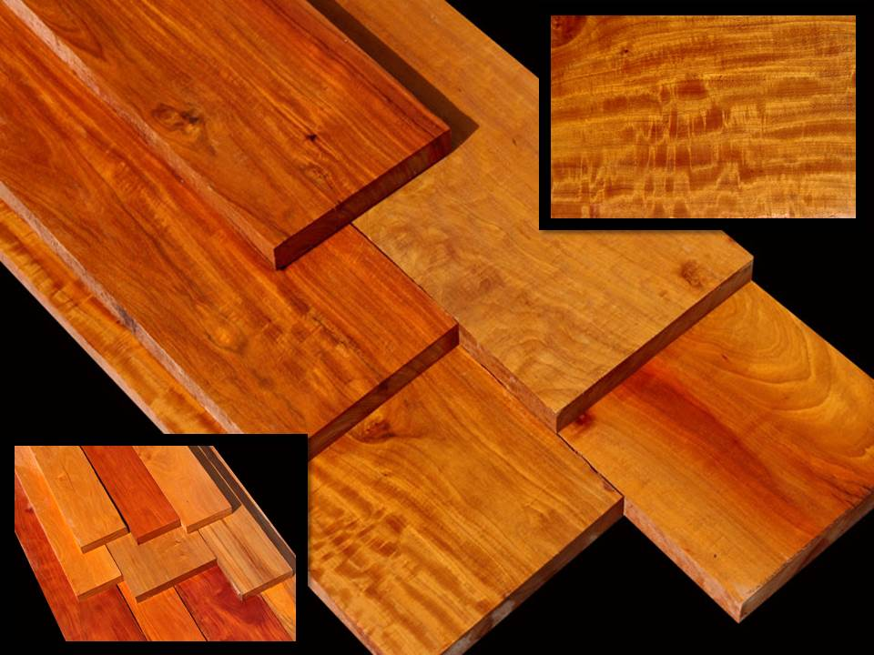 Rare Pernambuco / Brazil Wood ~ Takes a Glass-like Finish!