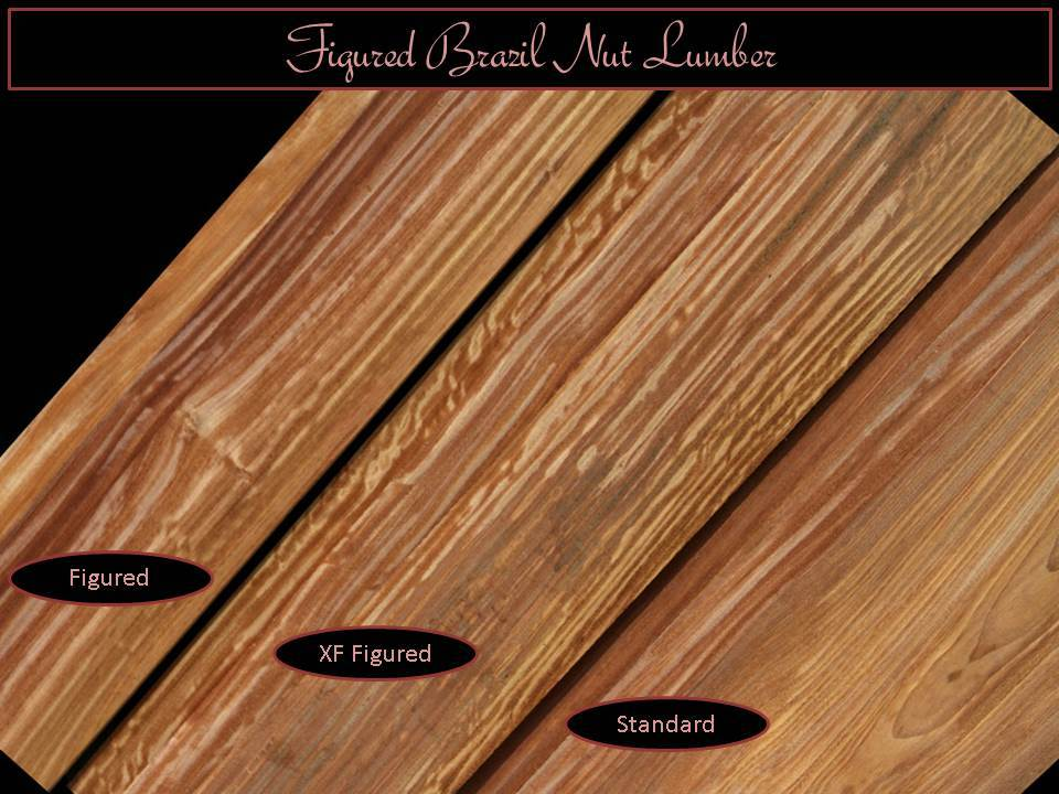 Exclusive New Species, Figured Brazil Nut Wood