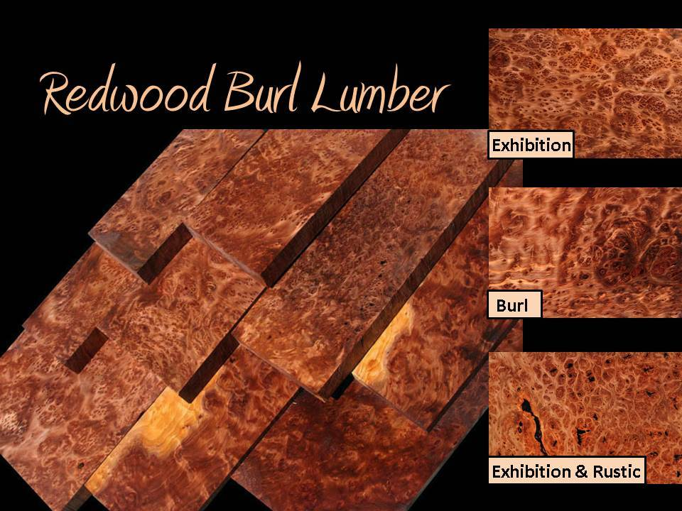 Exhibition Redwood Lace Burl Lumber