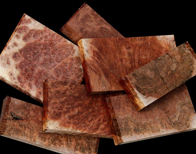 Exhibition Australian Red Mallee Burl