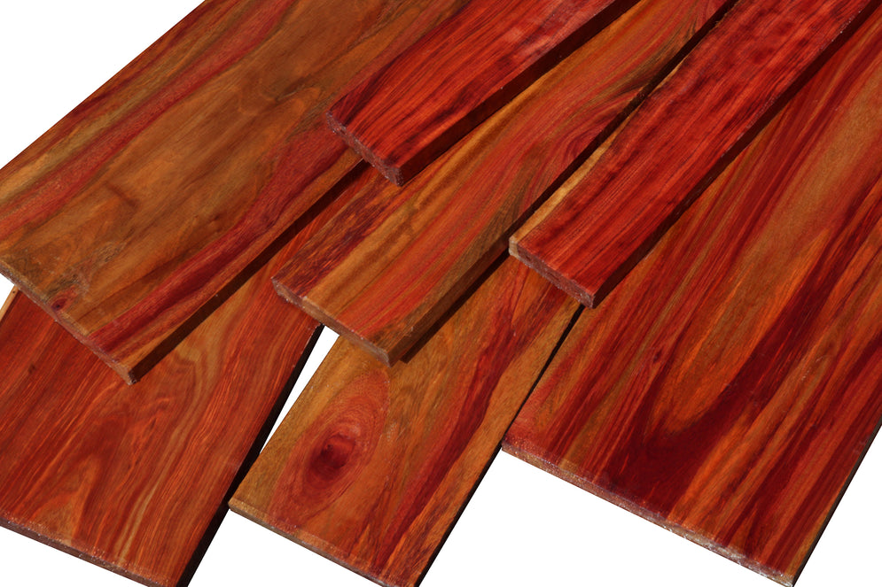Striped Bloodwood