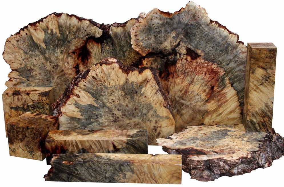 Buckeye Burl - It's Back!