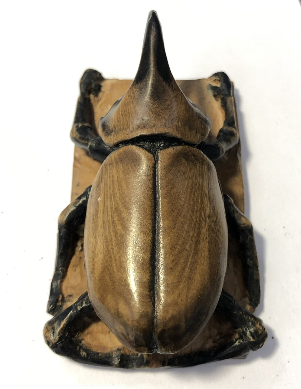 Rhinoceros Beetle Carving in Boxwood