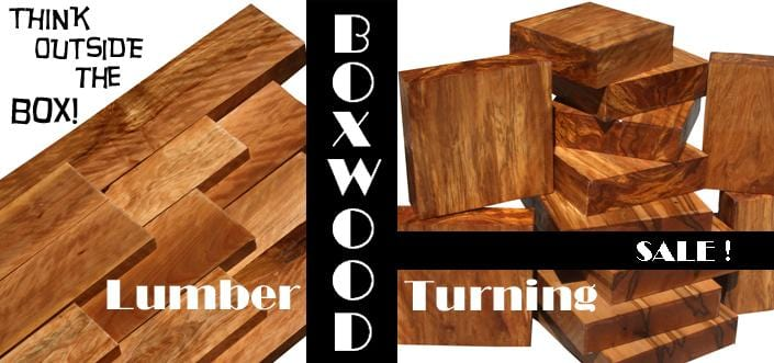 Think Outside the Box: Boxwood & Box Elder Duo!