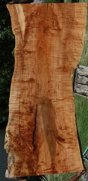Fiddleback Maple Slab