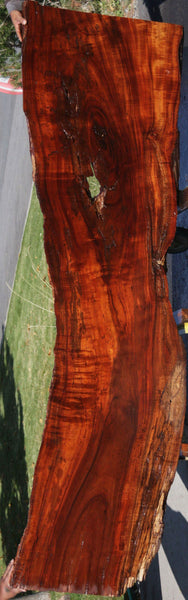 Rustic Curly Hawaiian Koa Slab