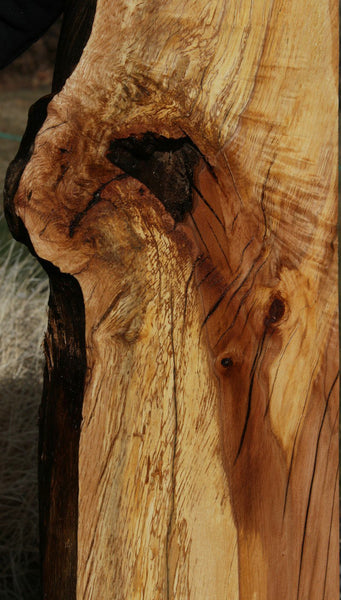 Spalted Natural Rustic Black Oak Mantel