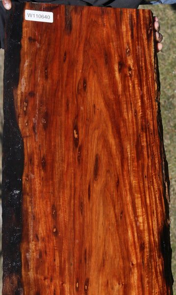 Red Narra Slab