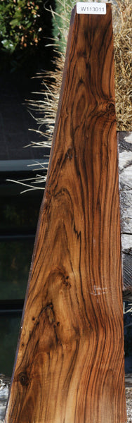 English Walnut Gun Stock