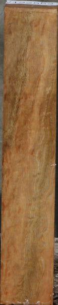 Blue Gum Turning Square