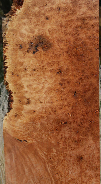 Maple Burl Live Edge Lumber