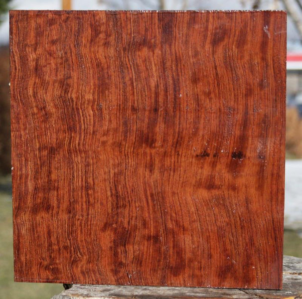 Figured Bubinga Bowl Blank