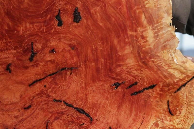 Red Mallee Resin Burl Round Slab
